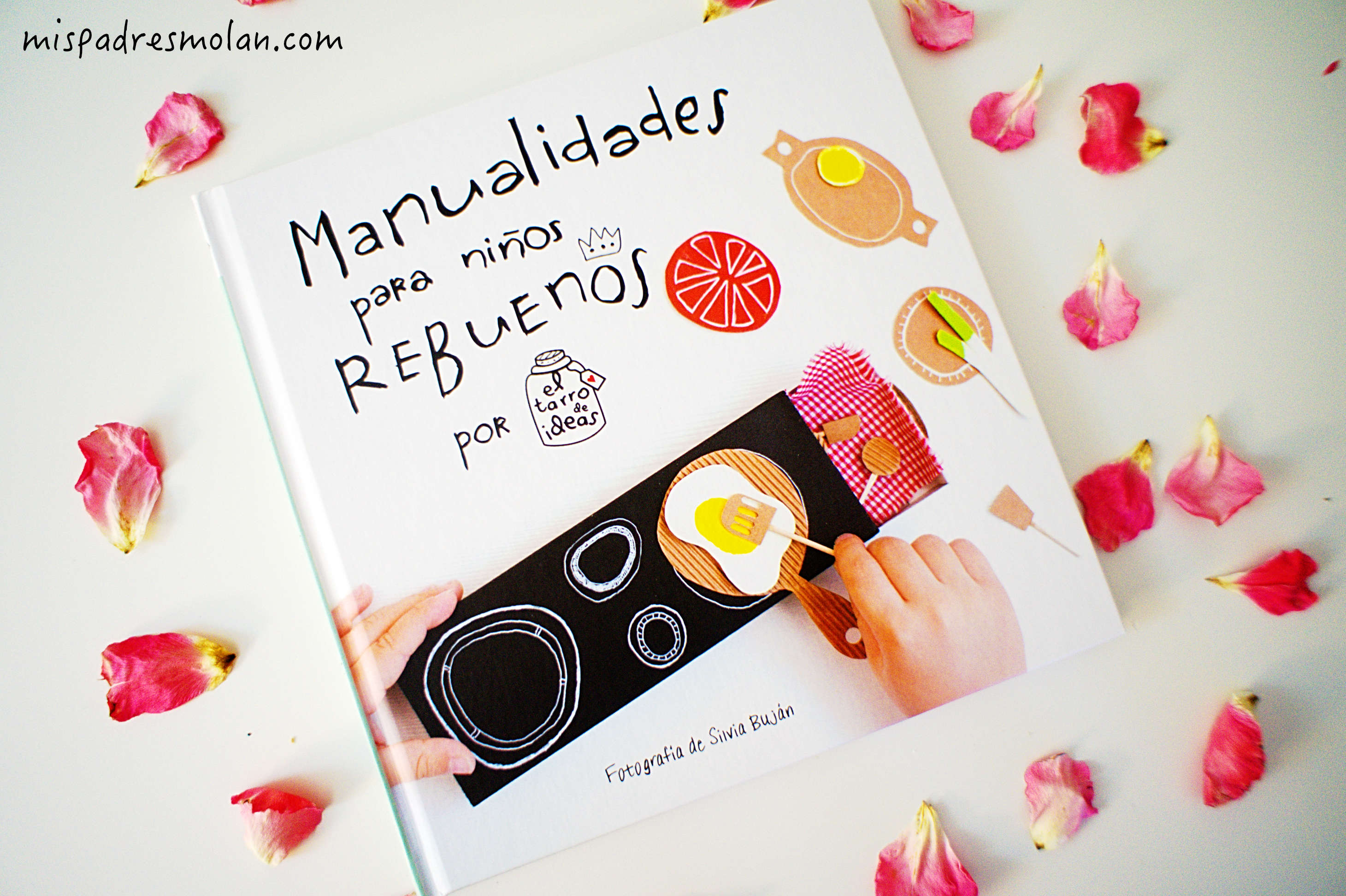manualidades libro