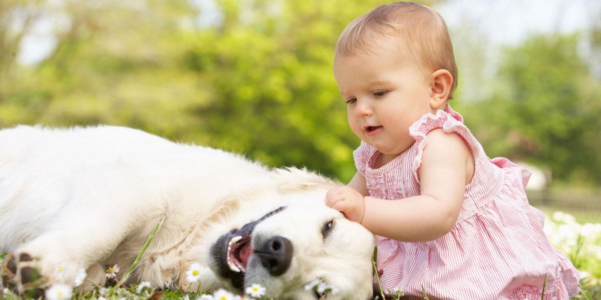 Baby-Dog-Grass-l